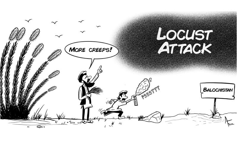 Fazal's Cartoon