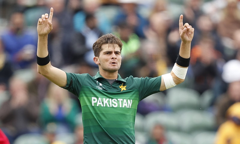 Shaheen Shah Afridi celebrates after bowling out Australia's Glenn Maxwell. ─ AP