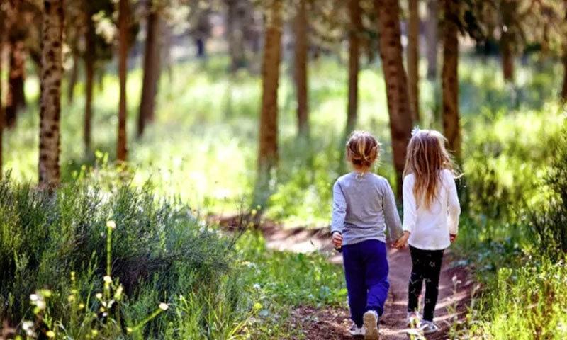 سر سبز مقامات پر جانا بھی صحت کے لیے فائدہ مند ہوتا ہے،ماہرین—فوٹو: شٹر اسٹاک