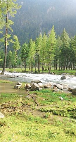 The Kumrat stream