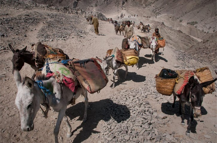 For three days a week, fuel is transported on the Iranian side by motorbikes, and for three days by donkeys | Sadegh Souri/World Wide (Italy)