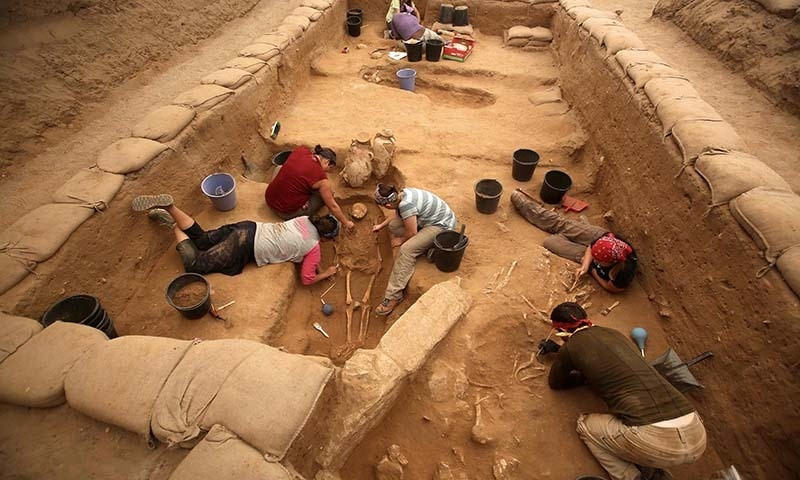 German archaeologists suggest Biblical-era Philistines came from Europe