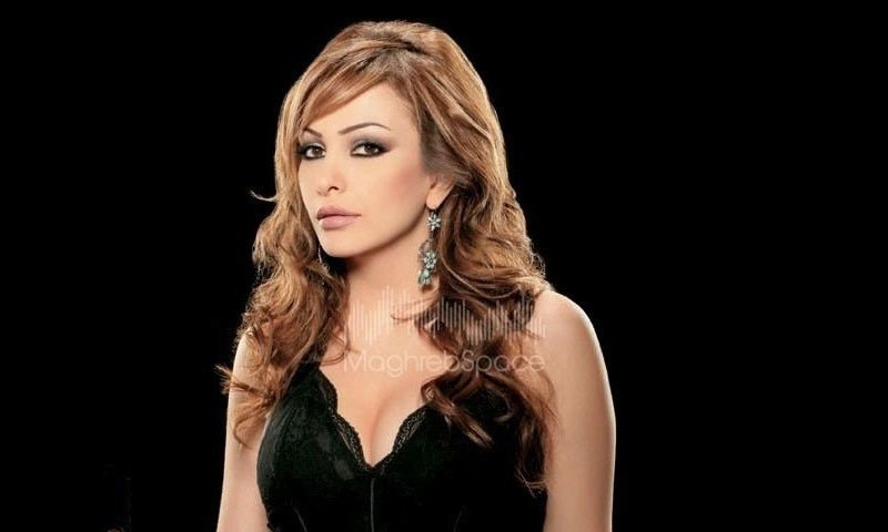 امل حجازی نے پہلے ہی میوزک ایلبم سے شہرت حاصل کی تھی—فوٹو: فیس بک