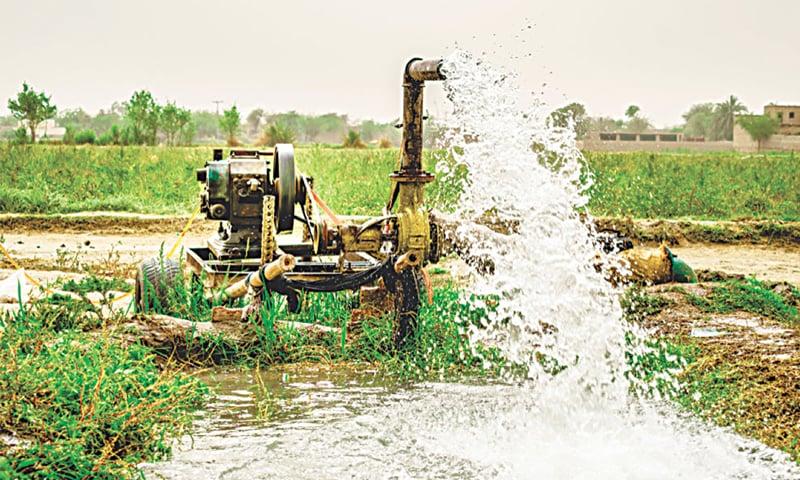 زرعی شعبے کی بدانتظامی کی وجہ سے ہمارا آدھا پانی ضائع ہوجاتا ہے