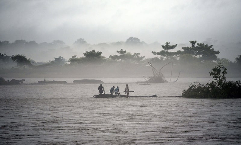 In this picture taken on July 15, Indian men catch a tree in the flooded Manas river, following heavy rainfall in Baksa district of Assam, in the North-Eastern states of India. — AFP