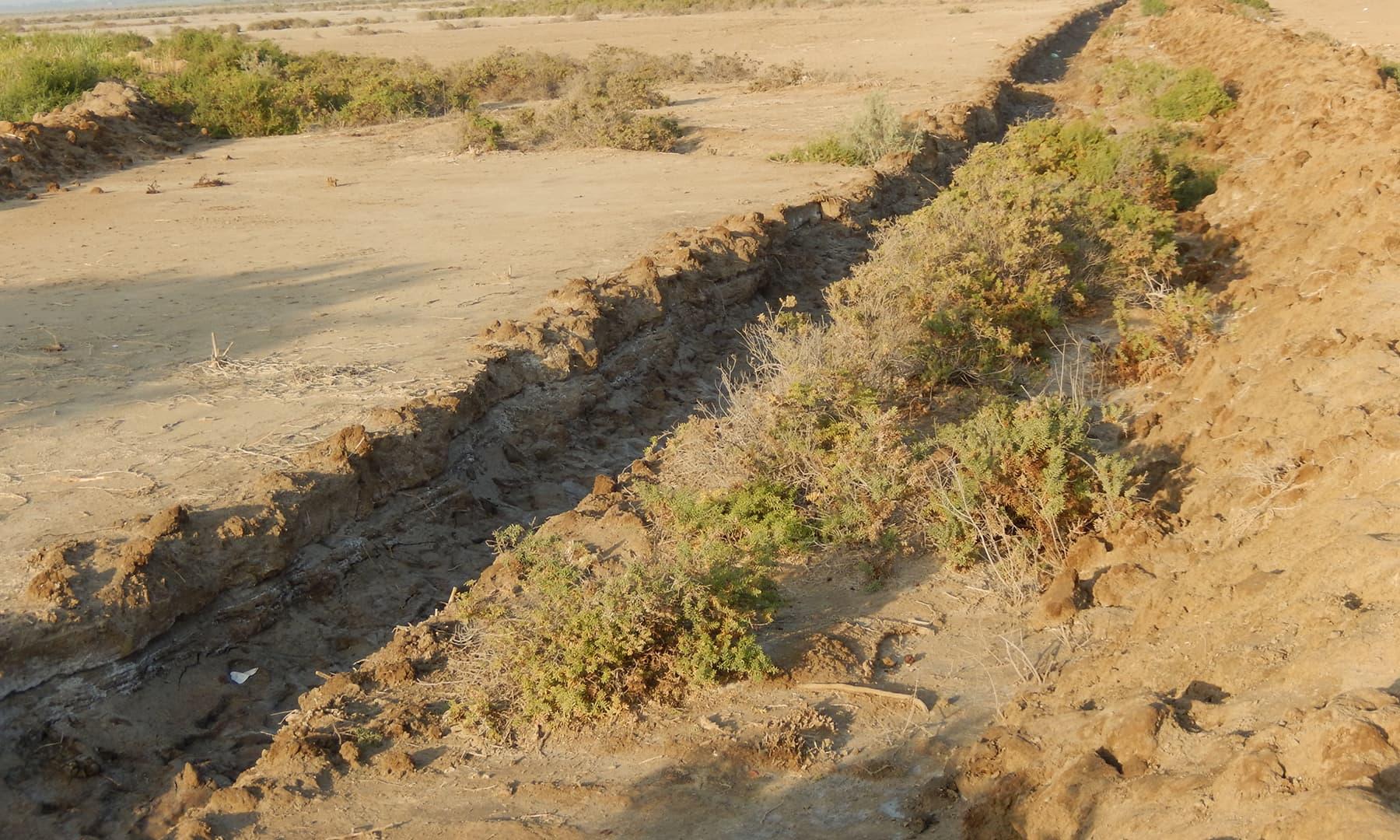 سوکھی ہوئی نہر—تصویر ابوبکر شیخ