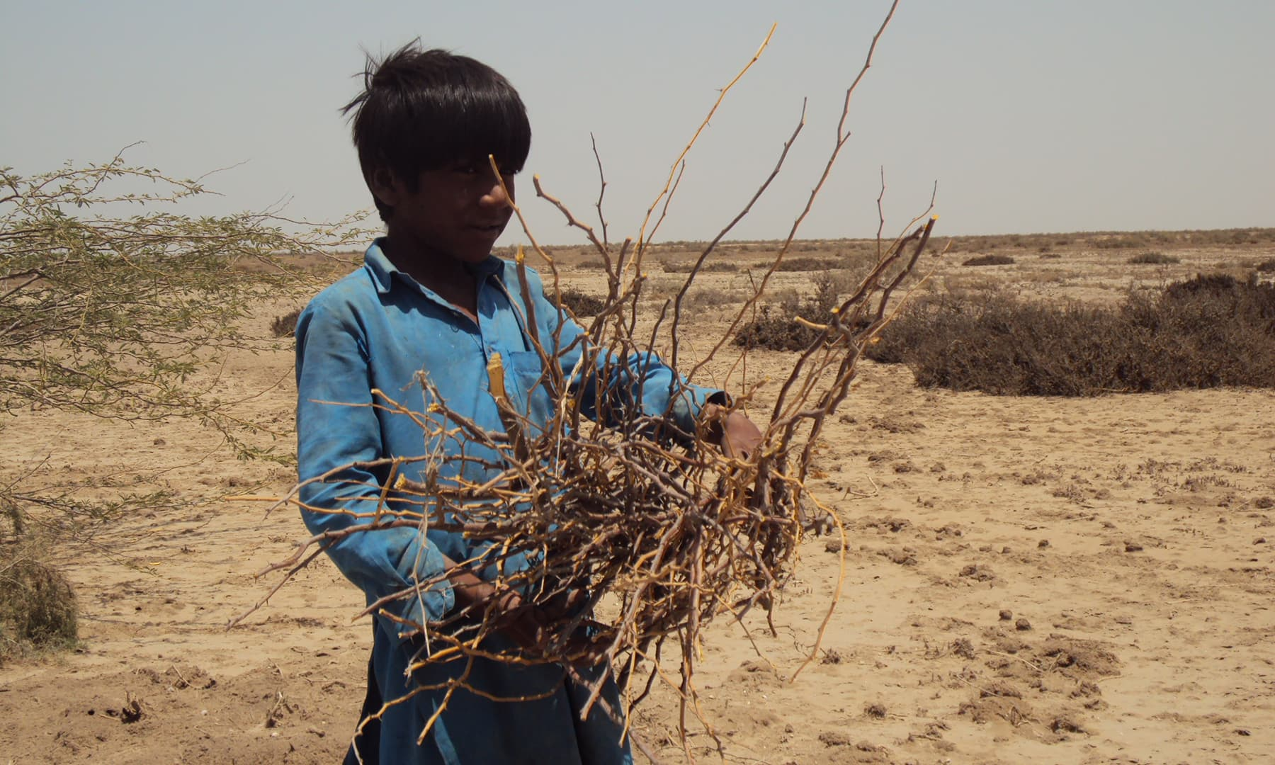 ایک بے رونق گاؤں—تصویر ابوبکر شیخ