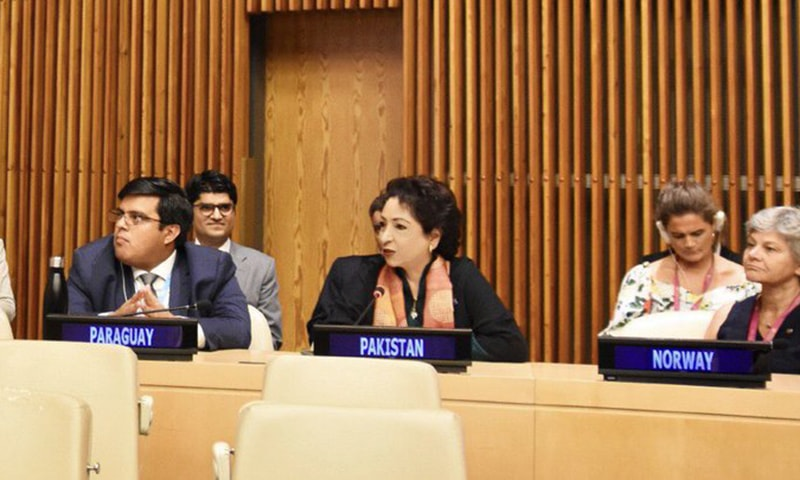 Ambassador Maleeha Lodhi, who was elected vice president by acclamation after her candidature was endorsed by the 54-member body, will assume the Asia Pacific seat in the Ecosoc bureau. — Photo courtesy Maleeha Lodhi Twitter