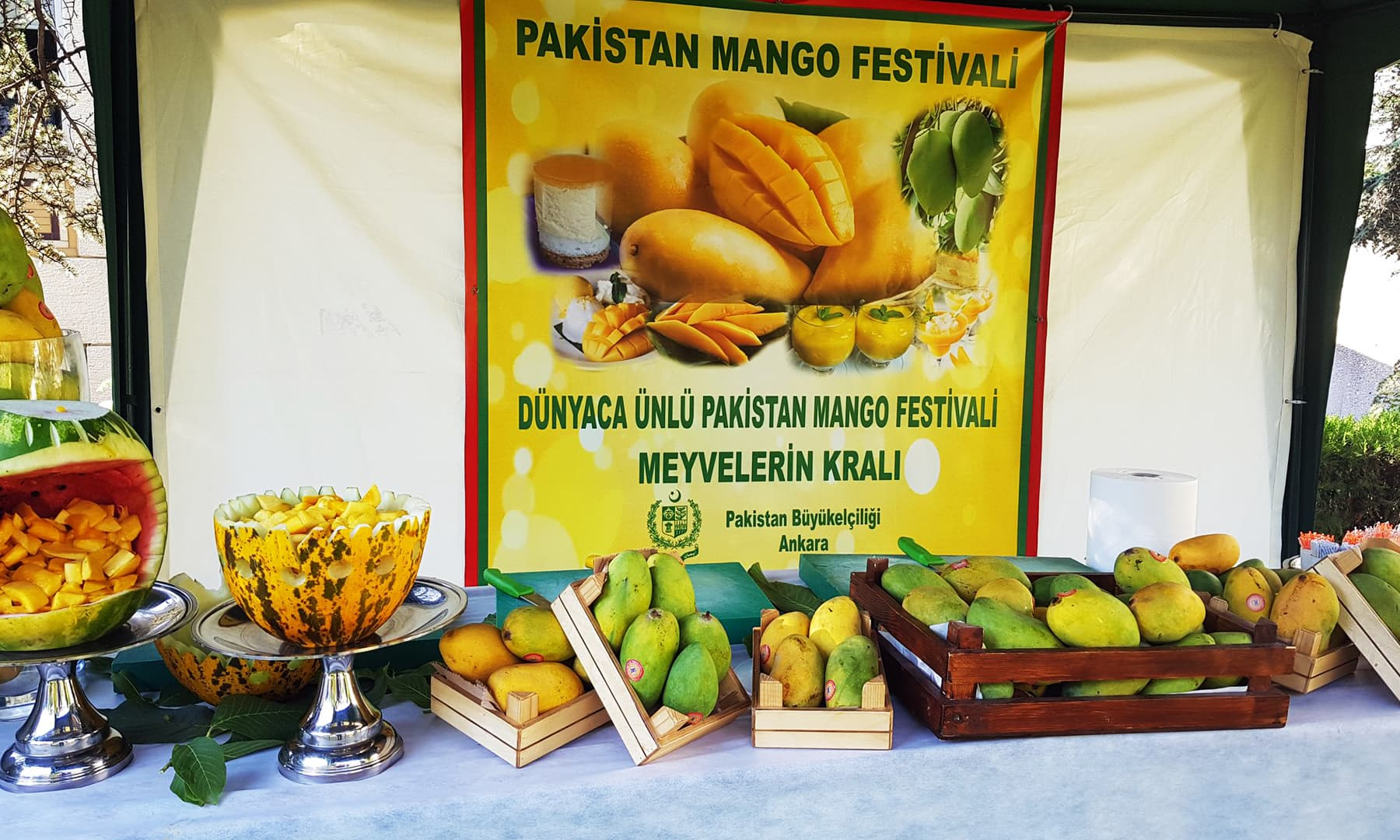 A display table features a variety of Pakistani mangoes.
