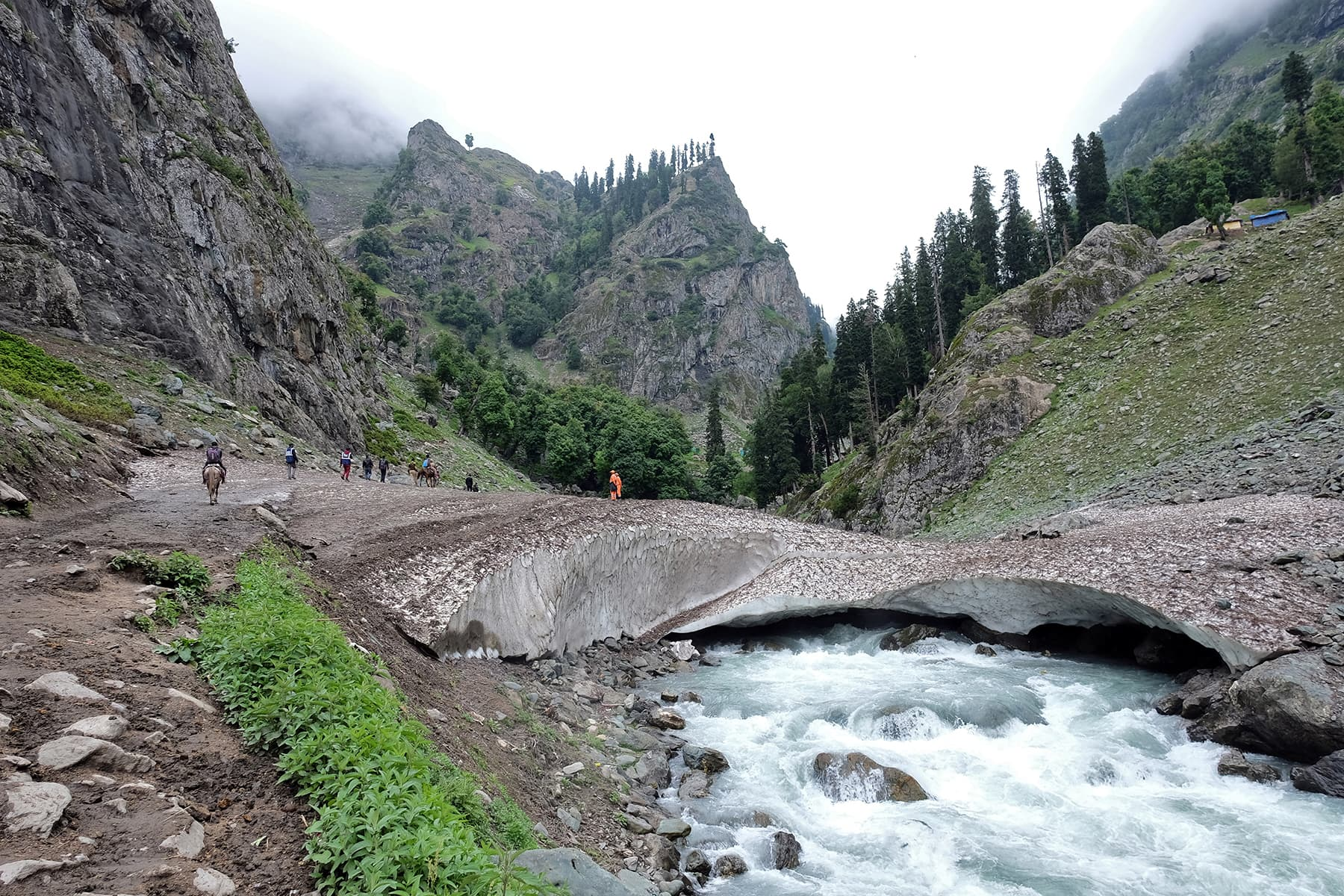 Amarnath Yatra suspended for today due to bad weather