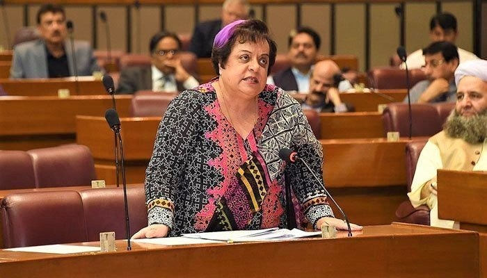 Minister for Human Rights Shireen Mazari addressing the second day of joint session of the parliament on Wednesday. — GOP Twitter