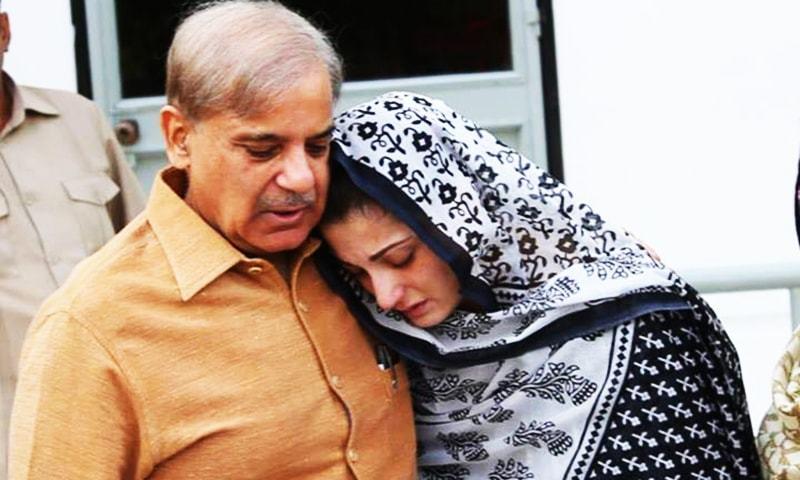 مریم نواز کی گرفتاری سے کیا پیغام دیا جارہا ہے؟ شہباز شریف — فائل فوٹو: مسلم لیگ (ن)