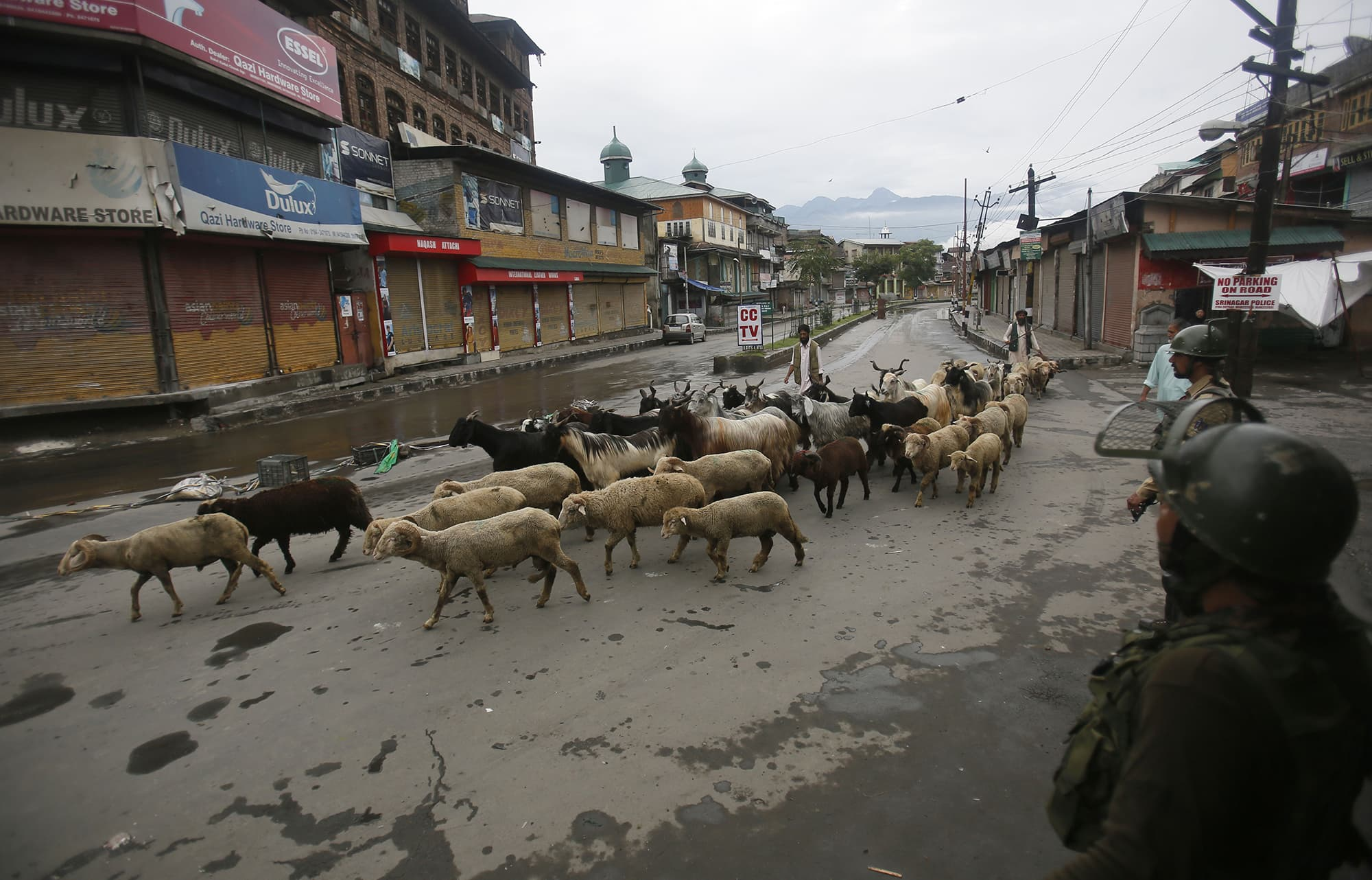 A shepherd herds his sheep past Indian paramilitary soldiers patrolling a street in Srinagar. ─ AP