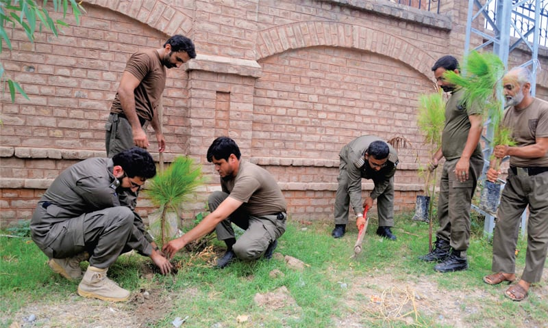 Rescue 1122 personnel plant saplings in Peshawar on Sunday. — White Star