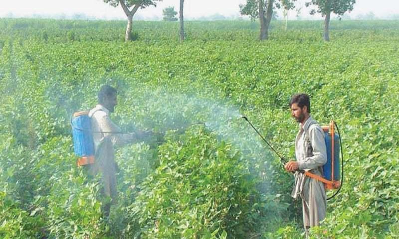 Pests of pesticide trade