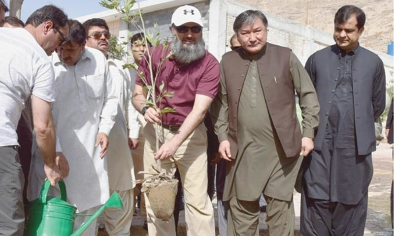 Balochistan CM kicks off tree plantation drive
