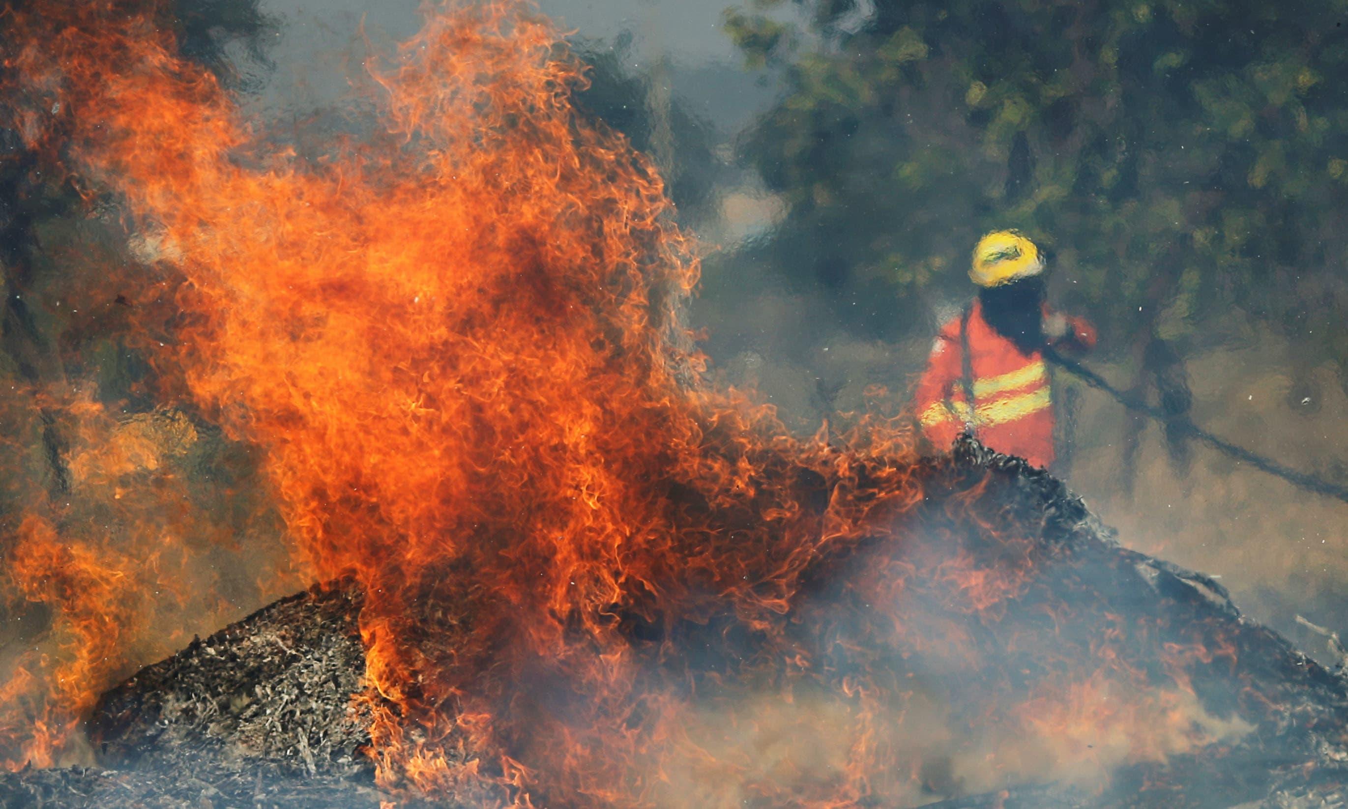 جولائی سے لگی آگ نے جنگل کے ایک بہت بڑے حصے کو جلا کر راکھ کردیا —فوٹو/ رائٹرز