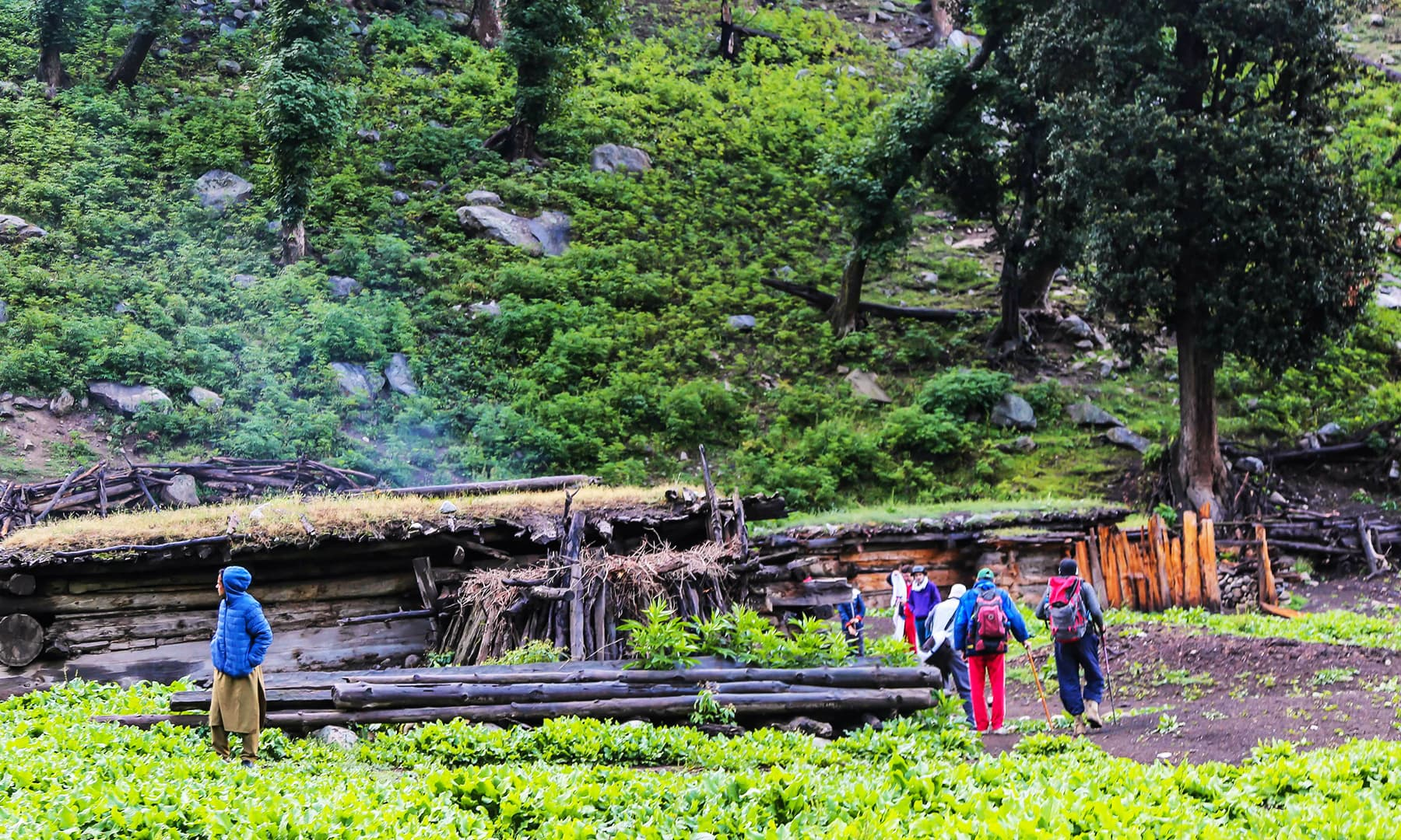 Trekkers stay in local huts at Gujar Banr towards Mastij Lake.