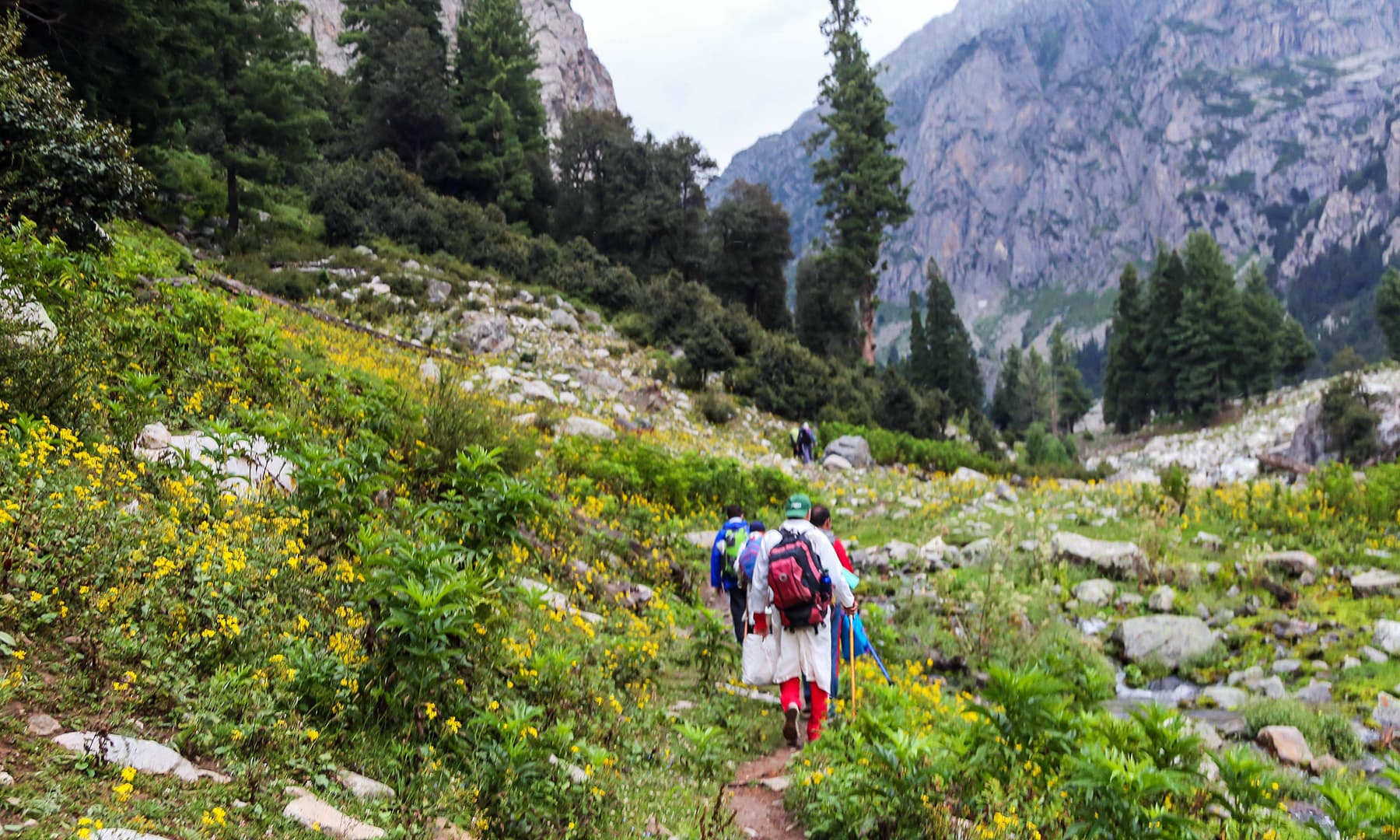 Trekkers and tourist pass through Janshai meadows towards Mastij Lake.