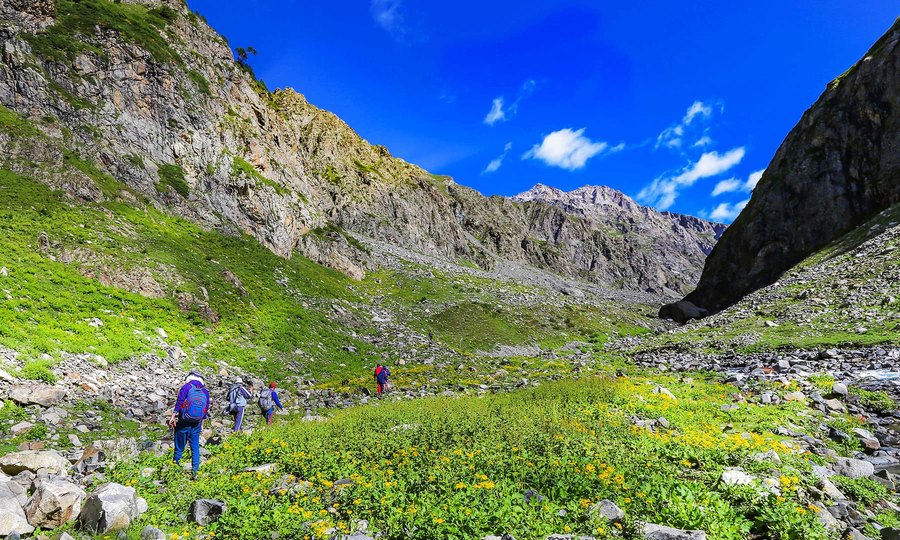Trekkers and tourists pass the scenic Janshai meadows towards Mastij Lake.