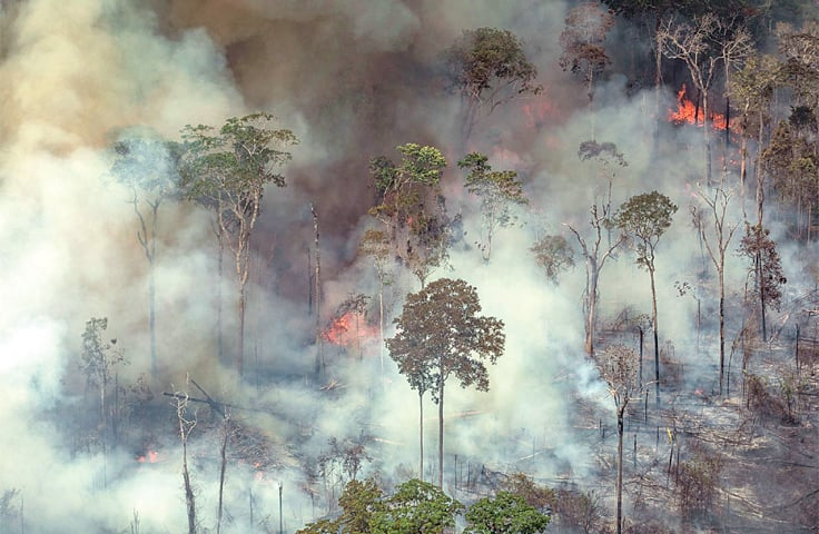 PORTO VELHO: An aerial picture released by Greenpeace shows smoke billowing from forest fires in the Amazon basin of north-western Brazil on Saturday. — AFP