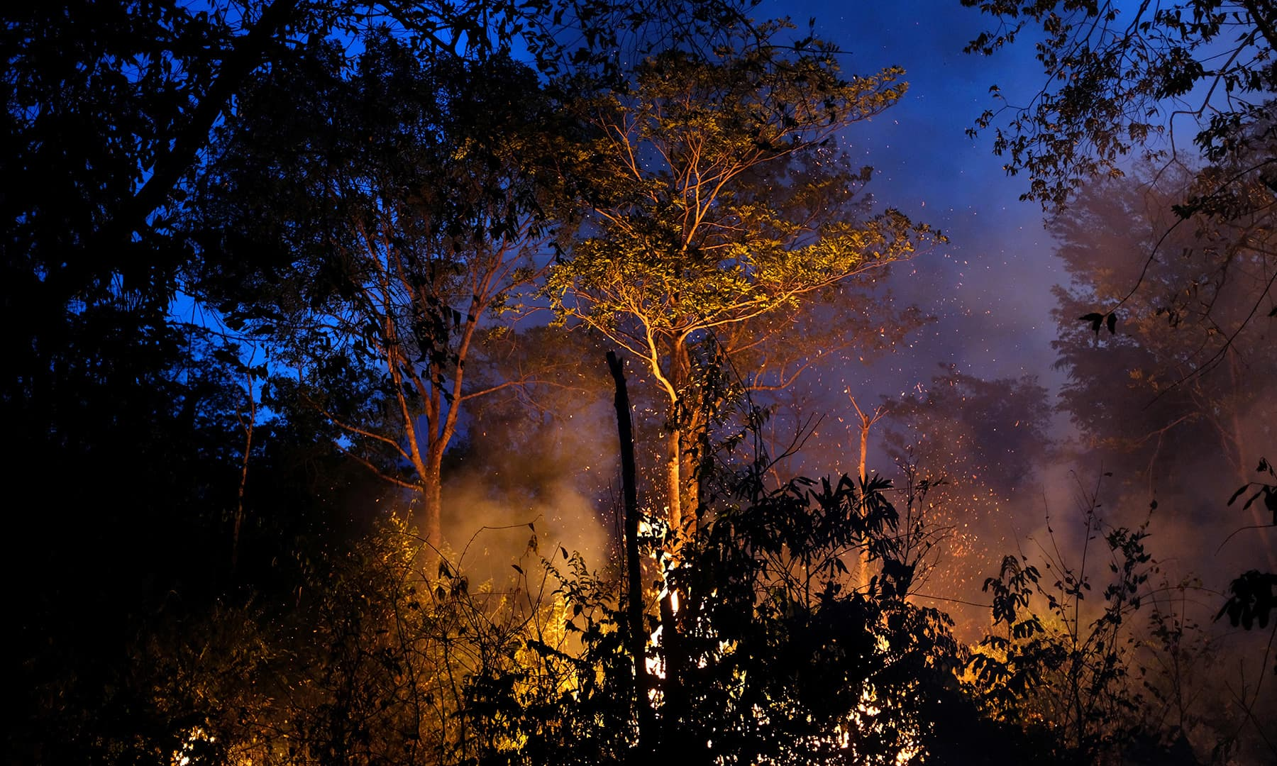 A tract of Amazon jungle burning as it is being cleared by loggers and farmers in Canarana, Mato Grosso state, Brazil, Monday. — Reuters