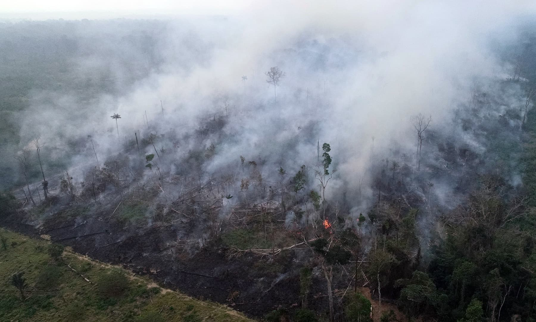 An aerial view of a tract of the Amazon jungle burning as it is being cleared by loggers and farmers in Porto Velho, Rondonia State, Brazil, is pictured in this August 23, 2019 picture taken with a drone. — Reuters