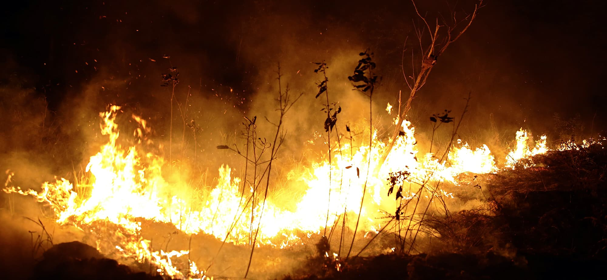 A fire burns in highway margins in the city of Porto Velho, Rondonia state, part of Brazil's Amazon, Sunday, Aug. 25, 2019. (AP Photo/Eraldo Peres) — Copyright 2018 The Associated Press. All rights reserved