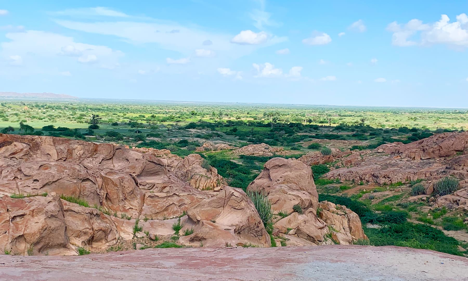 The remarkable Karoonjhar hills turn green after rain in Thar. — Photo by author