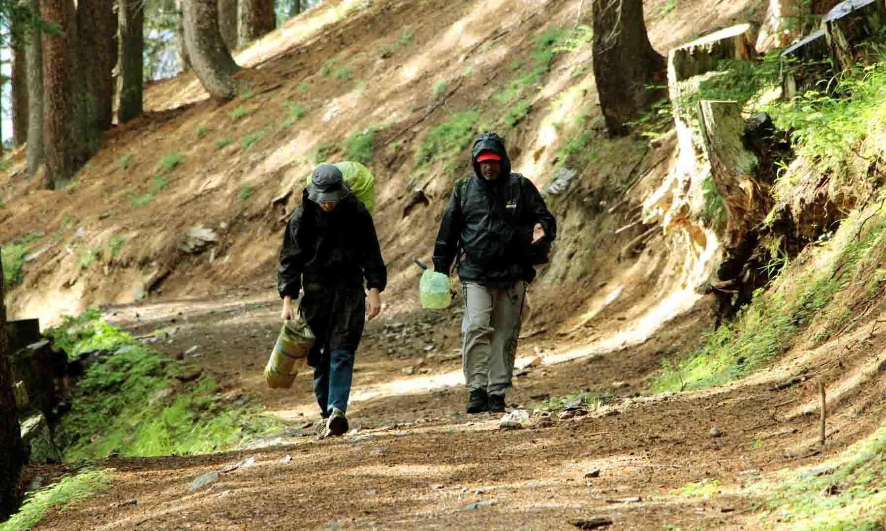جانشئی بانڈہ کی طرف گھنے جنگل کے درمیان پیش قدمی جاری ہے