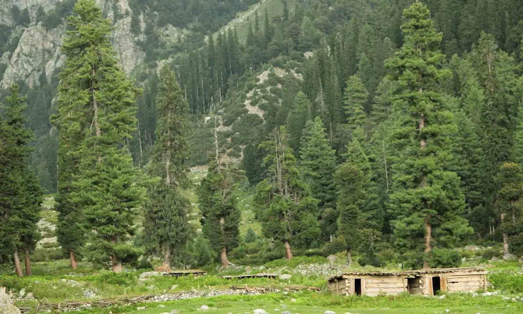 جانشئی بانڈہ کے آخری کوٹھے، جہاں سے آگے مستیج بانڈہ کے لیے سفر شروع کیا جاتا ہے