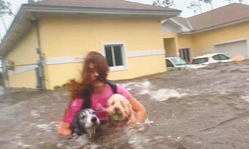 Freeport (Bahamas): A woman wades through waist deep water carrying her pet dogs as she is being rescued from her flooded home during Hurricane Dorian. — AP