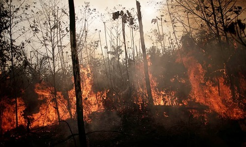Environmentalists blame laws enacted under leftist President Evo Morales, who has encouraged the burning of forest. — AFP/File