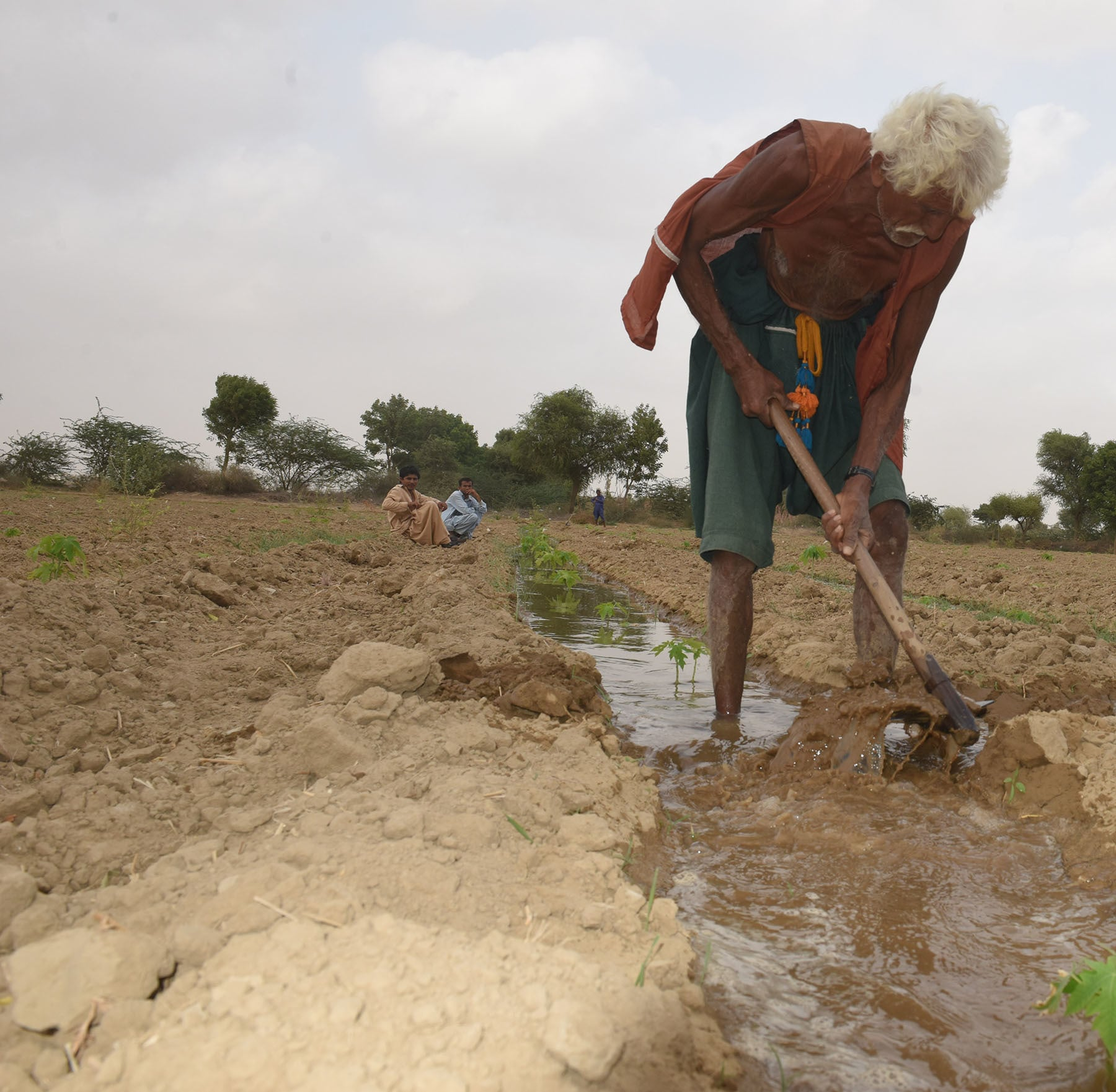 A farmer working on his patch of land in Malir district. – White Star