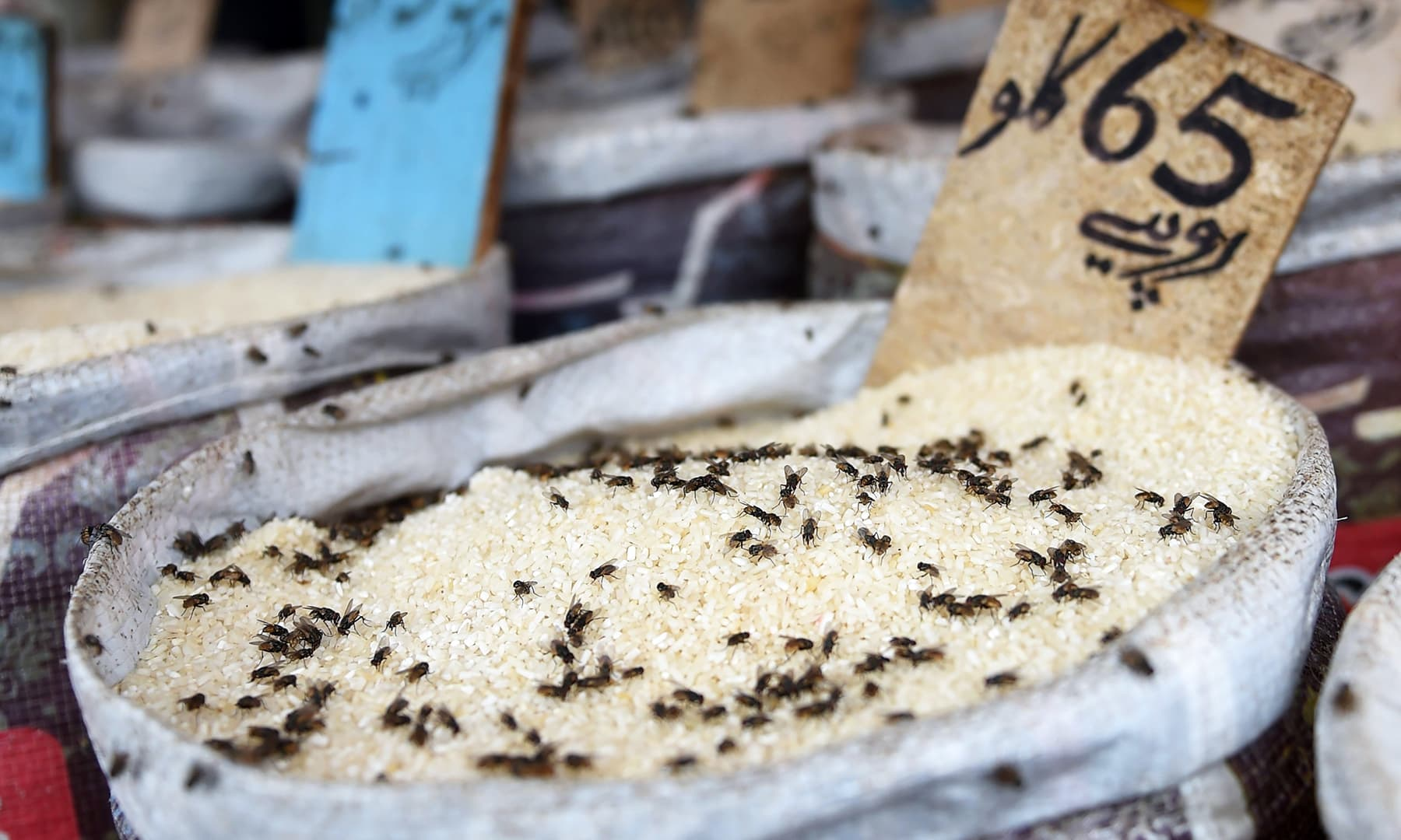 In this picture taken on August 31, 2019 flies sit on rice being sold at a market in Karachi. — AFP