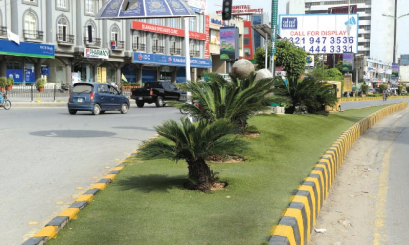 Artificial grass has been laid on a median near Roomi Park in Rawalpindi's Saddar area. — White Star
