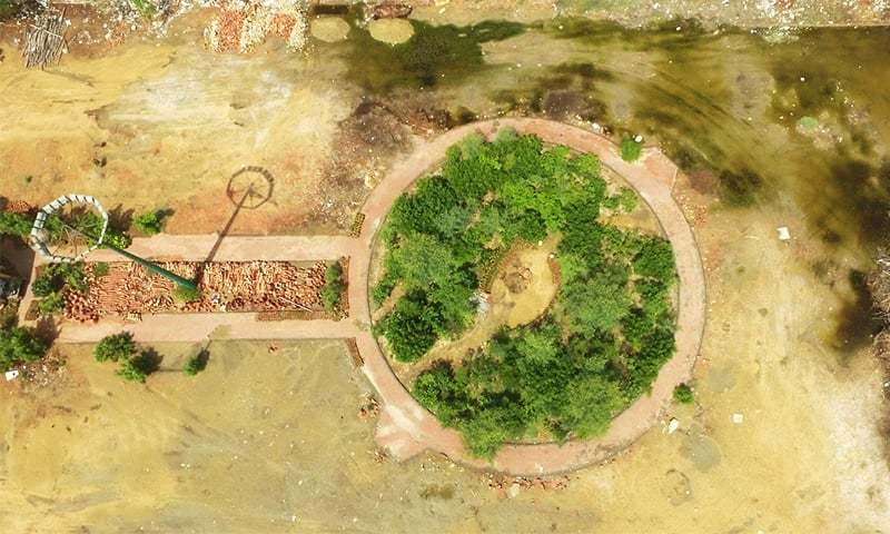 شہزاد قریشی کا کہنا ہے کہ ہمارے لگائے گئے پودے کے ایم سی کے عملے نے اکھاڑ دیے —فوٹو: بشکریہ اربن فاریسٹ