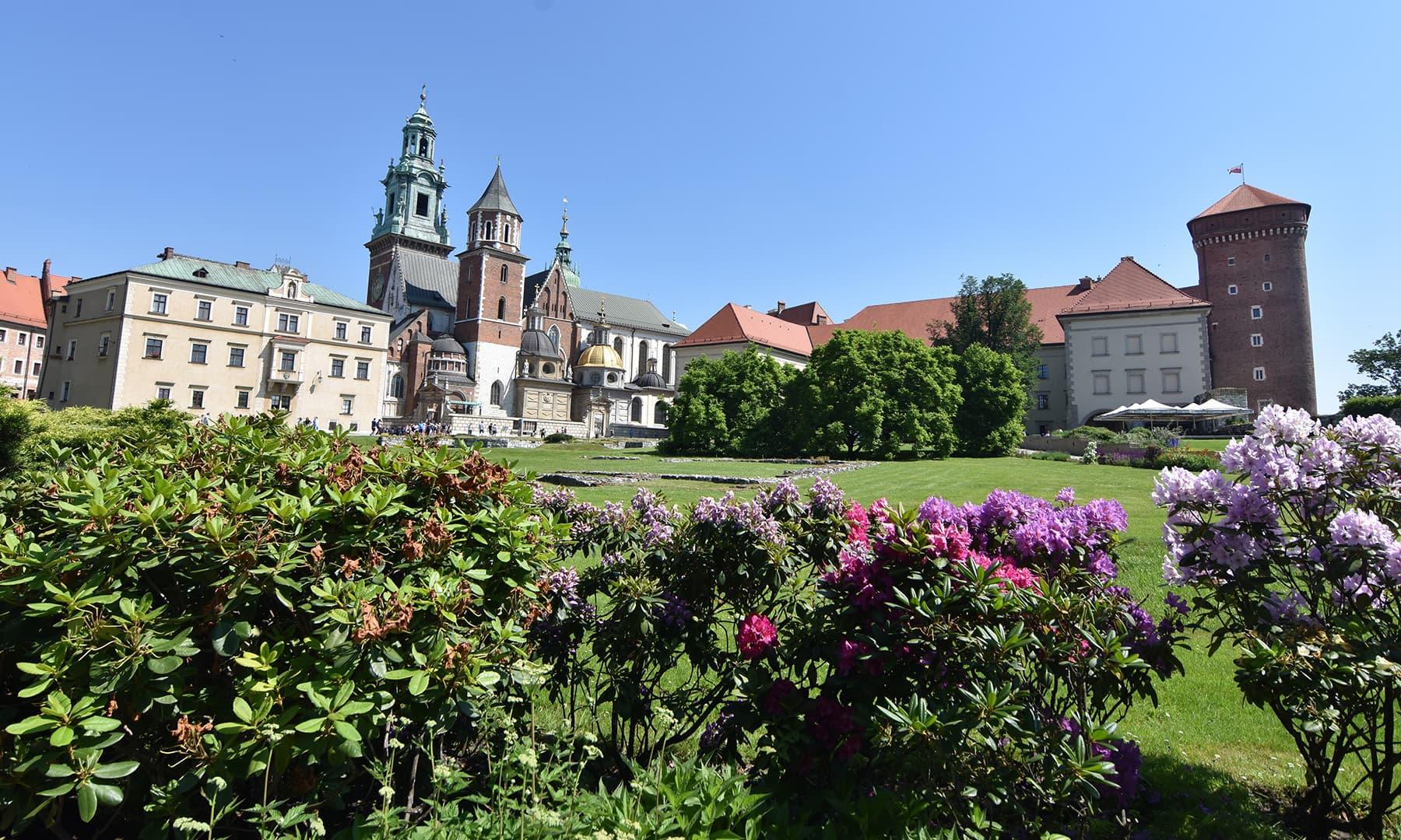 قلعے کے پھولوں بھرے لان کی چند تصاویر لیں اور شہر کی طرف جانے کا فیصلہ کیا