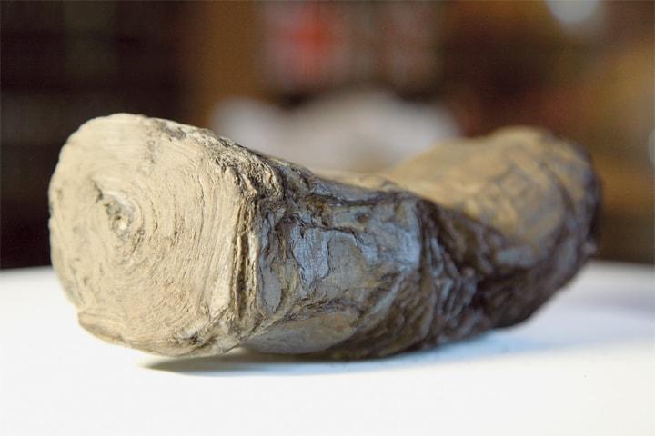 An ancient Herculaneum scroll.—Reuters