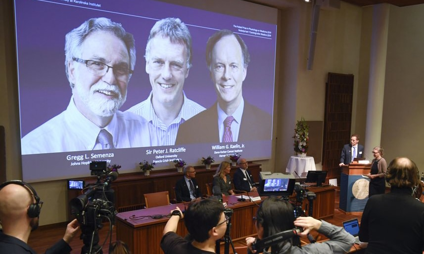 Two scientists from US, one from Britain get Nobel Medicine prize for learning how cells use oxygen