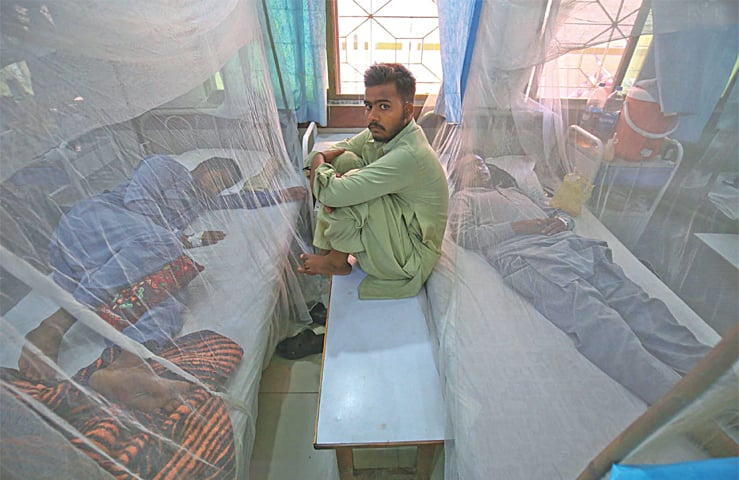 KARACHI: An attendant sits on a bench in a hospital on Thursday as two patients suffering from dengue fever rest in their beds.—INP