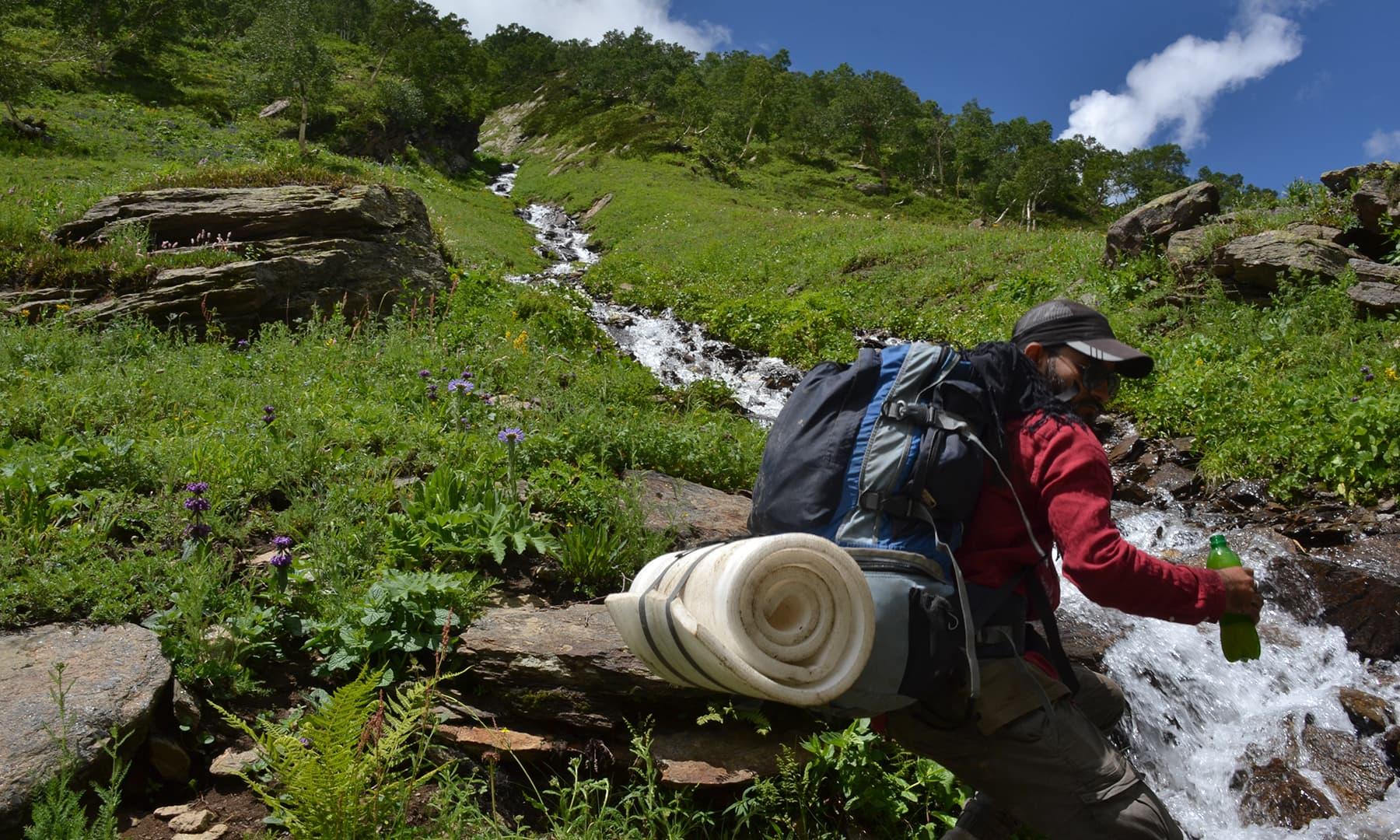 وادی میں خوبصورت چشموں اور آبشاروں کی بہتات ہے—اعجاز بھٹی