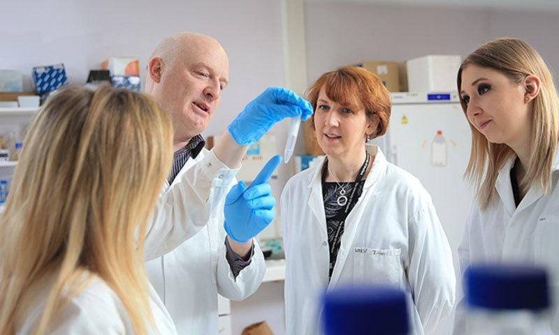 ماہرین نے تین ماہ کی تحقیق کے بعد اسپرم کا جائزہ لیا—فوٹو: یونیورسٹی آف شیفلڈ