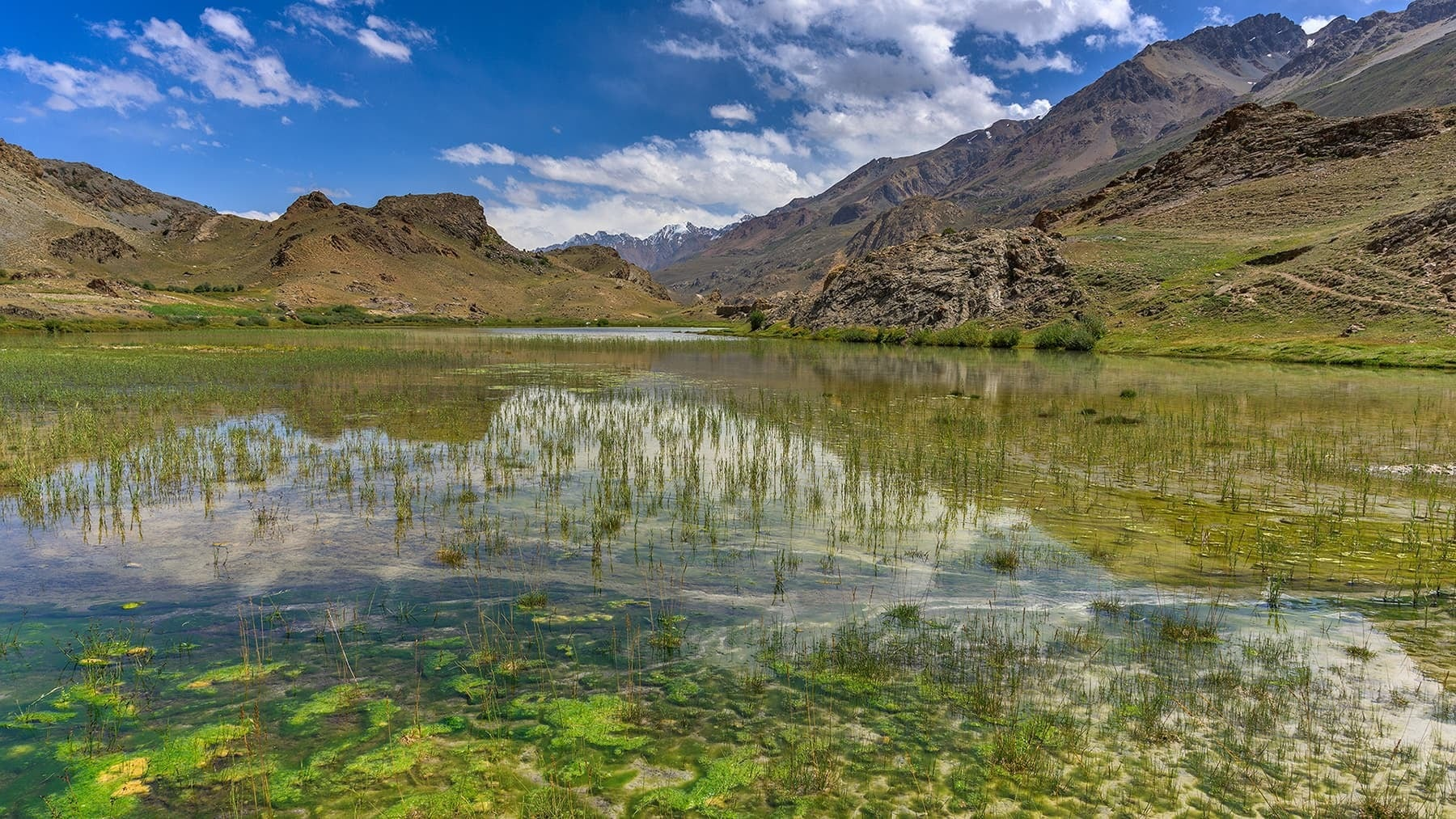 A pond on the way to Lashkargaz. — *Photo by author*