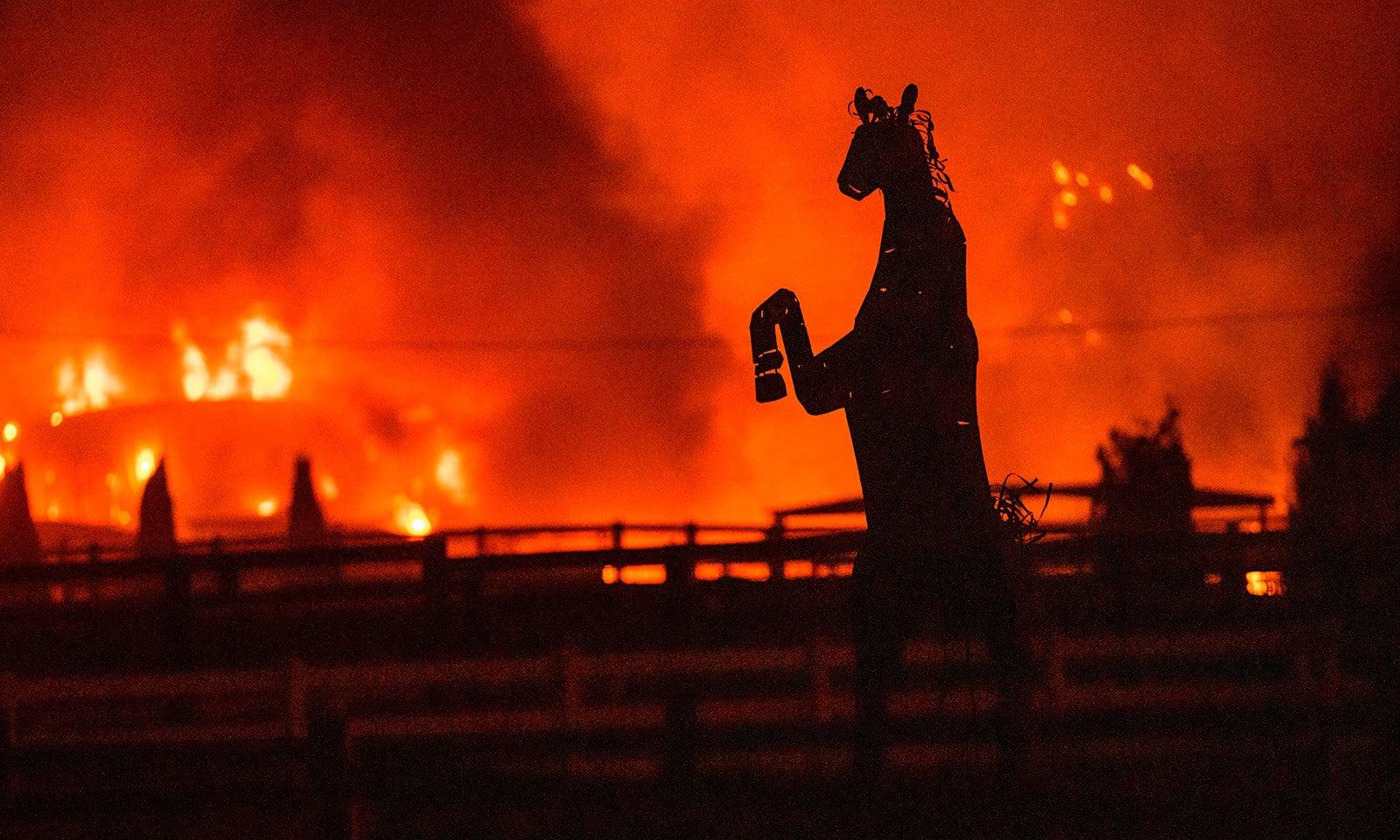 کیلیفورنیا میں آگ نے نجی املاک کو نقصان پہنچایا—فوٹو:اے ایف پی