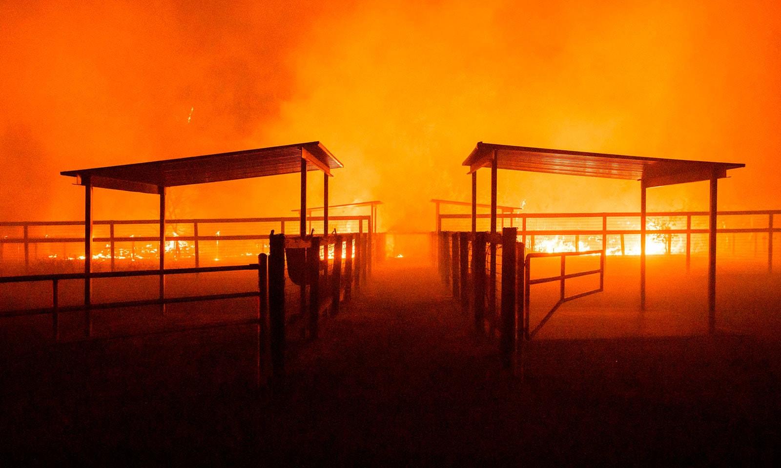 آگ پر قابو پانے کے لیے ہیلی کاپٹر کو بھی استعمال کیا گیا—فوٹو:اے ایف پی