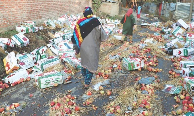 مقبوضہ کشمیر میں سیب کا تجارتی حجم 2 ارب ڈالر تک ہے—فوٹو: رائٹرز