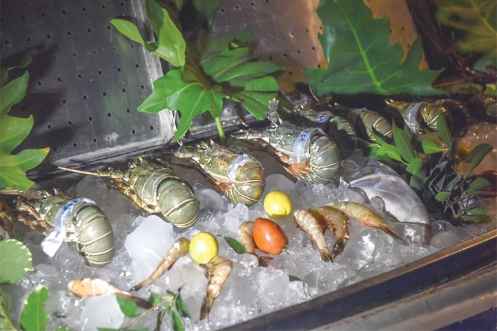 Raw seafood on display at the festival.—White Star