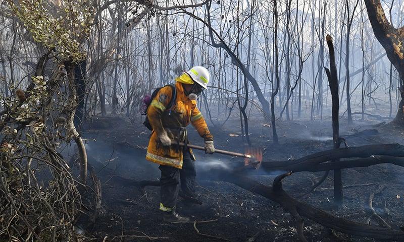 Australian bushfires hit Sydney suburbs