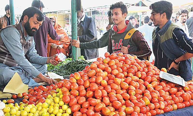 ISLAMABAD: A vendor sells tomatoes at a Bachat Bazaar on Friday. The vegetable scaled an all-time high above Rs300 per kg in some cities in recent days.—APP